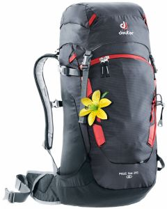 Deuter Rise Lite 26 SL Graphite-black